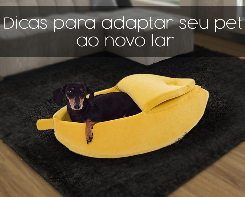Imagem ilustrativa: Modelo: Amora, Toca Banana Emporium Distripet